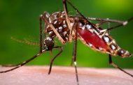 पावसाळ्यातील साथरोग स्वाइन फ्लू आणि डेंगू