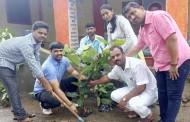 मुळशी तालुक्यातील पिंपोळी गावात 'एक झाड एक उपक्रम'